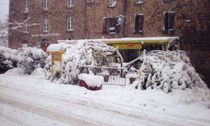 le murier sous la neige du Pilat le 20 novembre 2013
